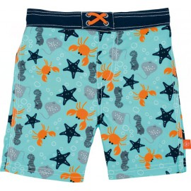 Boardshort Star Fish